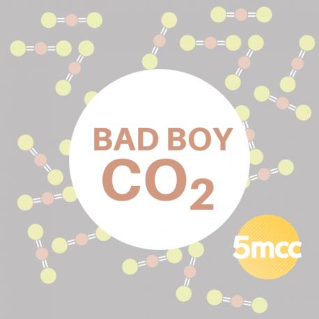 Bad Boy CO2