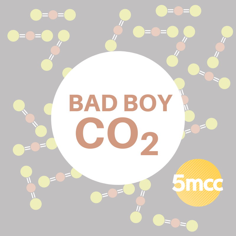 Bad Boy CO2