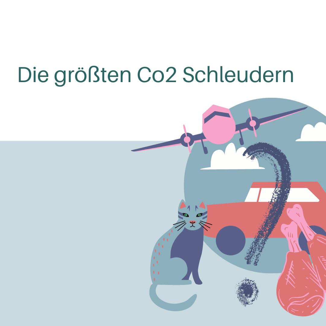 Die größten CO2-Schleudern