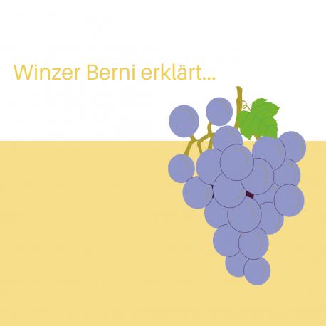 Winzer Berni erklärt