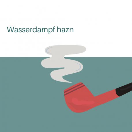 Wasserdampf hazn