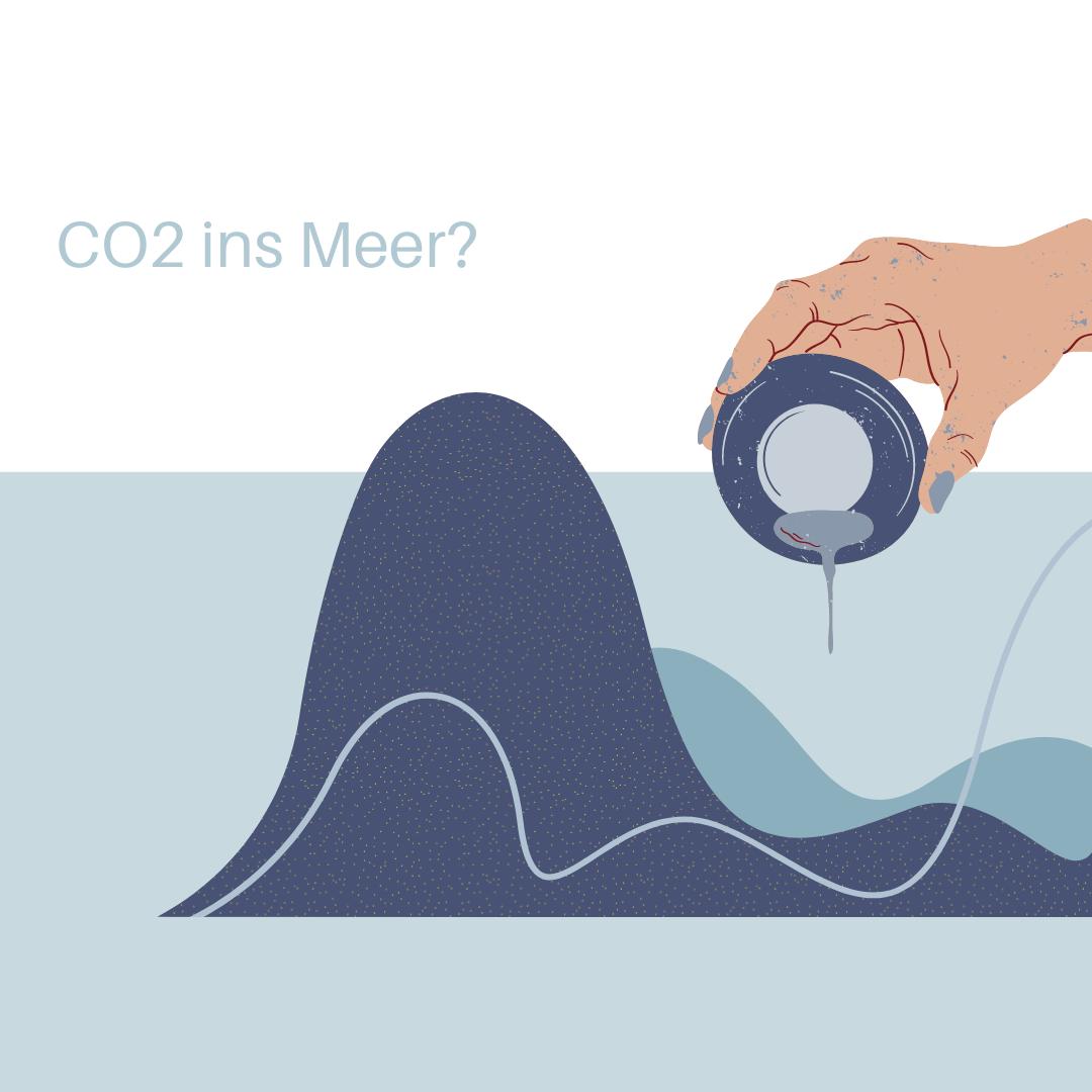 CO2 ins Meer?