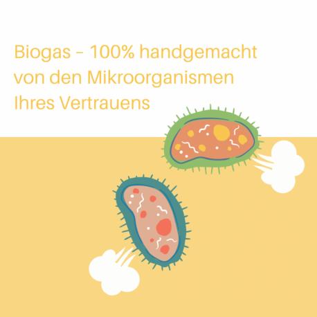 Biogas – 100% handgemacht von den Mikroorganismen Ihres Vertrauens