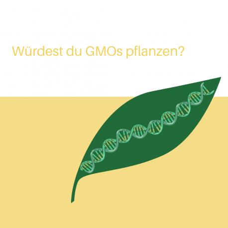 Würdest du GMOs pflanzen?